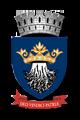 Consiliul local Brașov